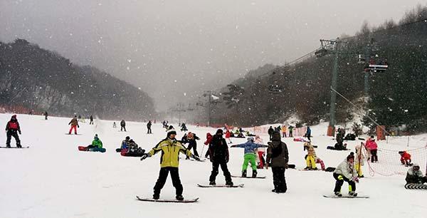 bunny hill snowboarding skiing muju korea